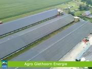 agrogiethoorn04